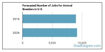 Forecasted Number of Jobs for Animal Breeders in U.S.