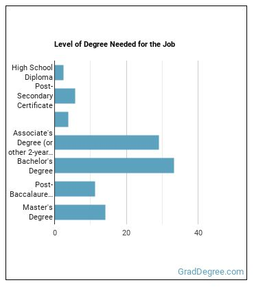 Computer Systems Analyst Degree Level