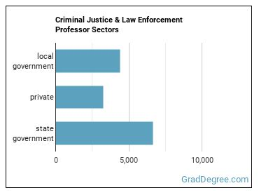 Criminal Justice & Law Enforcement Professor Sectors