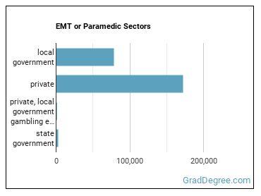 EMT or Paramedic Sectors