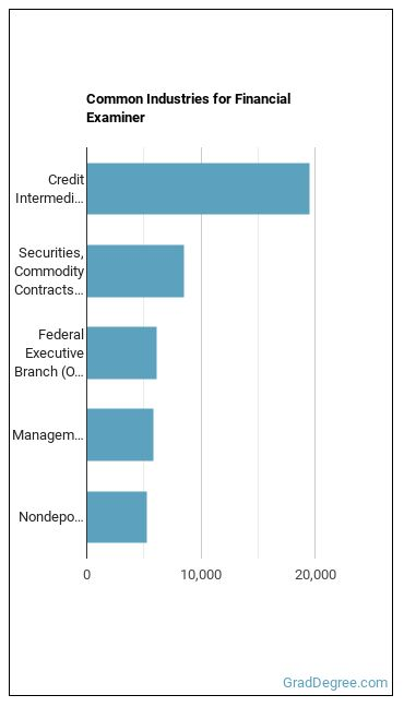Financial Examiner Industries