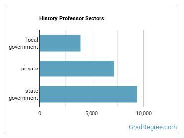 History Professor Sectors