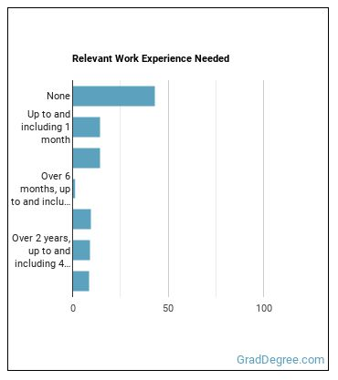 Insurance Sales Agent Work Experience