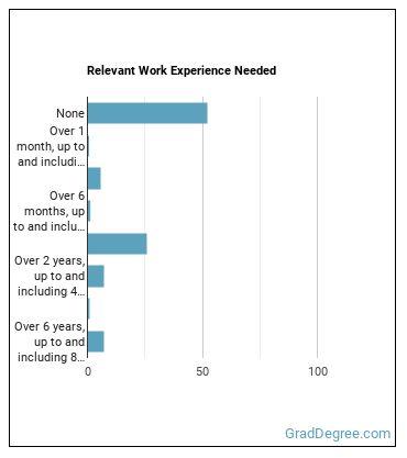 Judicial Law Clerk Work Experience