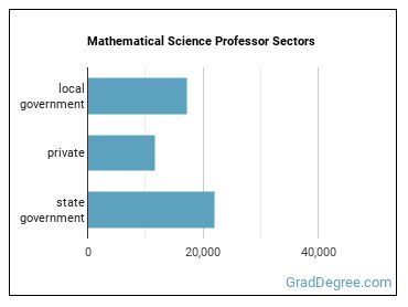 Mathematical Science Professor Sectors
