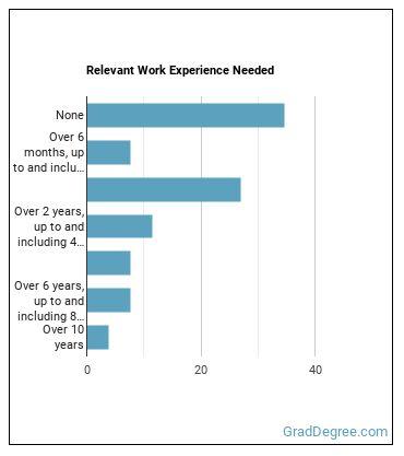 Creative Writer Work Experience