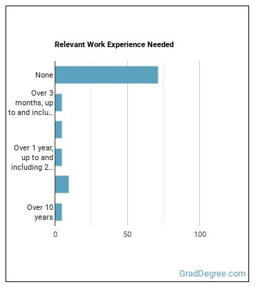 Real Estate Sales Agent Work Experience