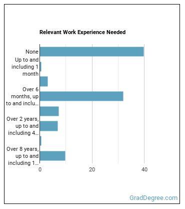 Retail Salesperson Work Experience
