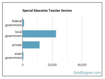 Special Education Teacher Sectors