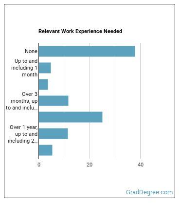 Kindergarten or Elementary School Special Education Teacher Work Experience