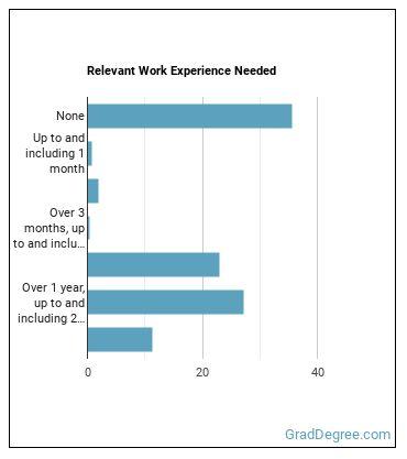 Speech-Language Pathologist Work Experience