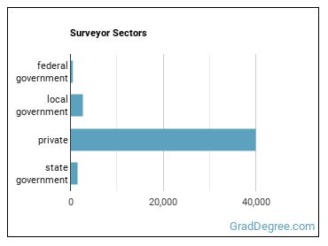 Surveyor Sectors