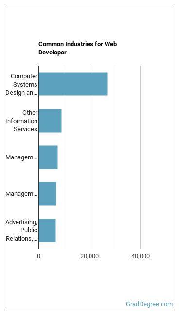 Web Developer Industries