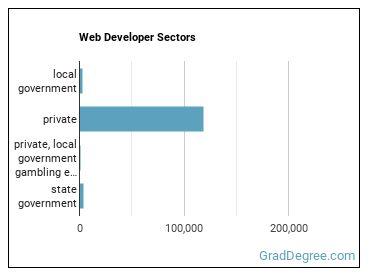 Web Developer Sectors