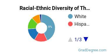 Racial-Ethnic Diversity of The Graduate Center Graduate Students