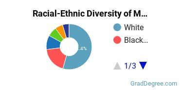 Racial-Ethnic Diversity of Metro State Graduate Students