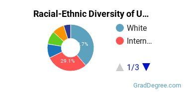 Racial-Ethnic Diversity of UMCP Graduate Students