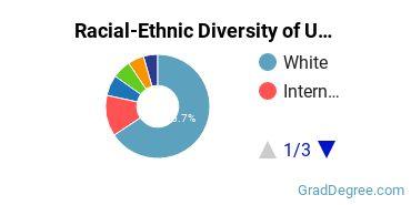 Racial-Ethnic Diversity of UWM Graduate Students