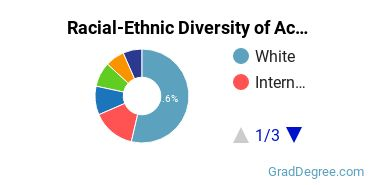 Racial-Ethnic Diversity of Accounting Students with Master's Degrees