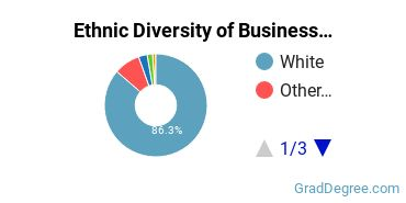 Business Administration & Management Majors in ME Ethnic Diversity Statistics