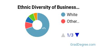 Business Administration & Management Majors in NE Ethnic Diversity Statistics