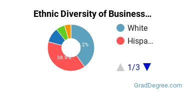 Business Administration & Management Majors in NM Ethnic Diversity Statistics