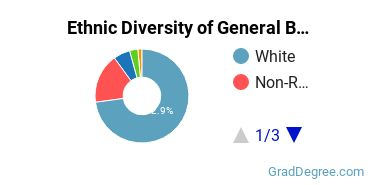 Business & Commerce Majors in ME Ethnic Diversity Statistics
