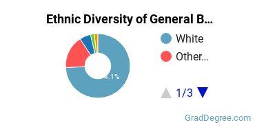 Business & Commerce Majors in NE Ethnic Diversity Statistics