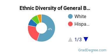 Business & Commerce Majors in TX Ethnic Diversity Statistics