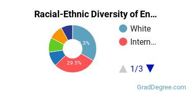 Racial-Ethnic Diversity of Entrepreneurship Students with Master's Degrees