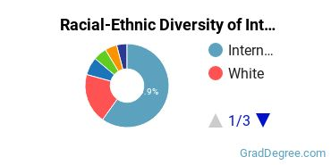 Racial-Ethnic Diversity of International Business Students with Master's Degrees