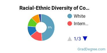 Racial-Ethnic Diversity of Communications Students with Master's Degrees