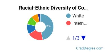 Racial-Ethnic Diversity of Communication & Journalism Students with Master's Degrees