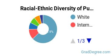 Racial-Ethnic Diversity of Publishing Students with Master's Degrees