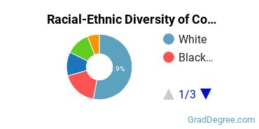Racial-Ethnic Diversity of Communications Tech Students with Master's Degrees