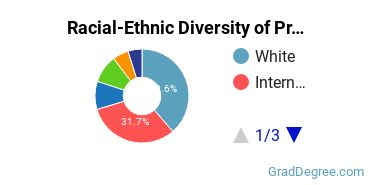 Racial-Ethnic Diversity of Programming Students with Master's Degrees