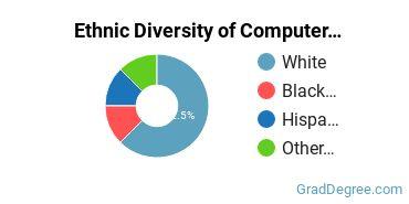 Computer Software Applications Majors in FL Ethnic Diversity Statistics