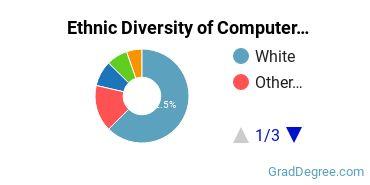 Computer Software Applications Majors in UT Ethnic Diversity Statistics