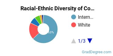 Racial-Ethnic Diversity of Computer Systems Students with Master's Degrees
