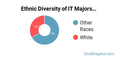 Information Technology Majors in AK Ethnic Diversity Statistics