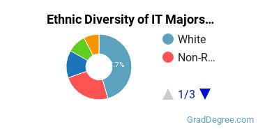 Information Technology Majors in CA Ethnic Diversity Statistics