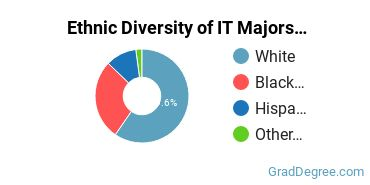 Information Technology Majors in CT Ethnic Diversity Statistics
