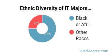 Information Technology Majors in HI Ethnic Diversity Statistics