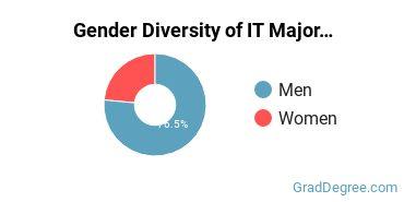 Information Technology Majors in IL Gender Diversity Statistics