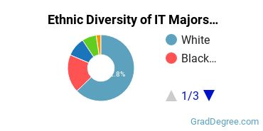 Information Technology Majors in IN Ethnic Diversity Statistics