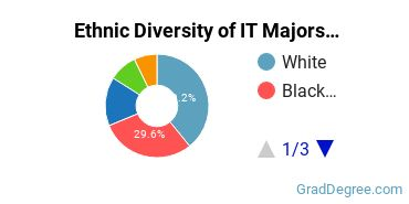 Information Technology Majors in MD Ethnic Diversity Statistics