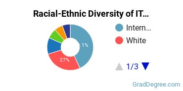 Racial-Ethnic Diversity of IT Students with Master's Degrees
