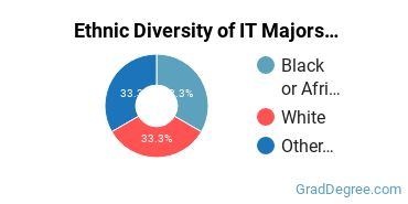 Information Technology Majors in MS Ethnic Diversity Statistics