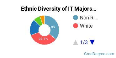Information Technology Majors in NJ Ethnic Diversity Statistics