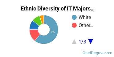 Information Technology Majors in RI Ethnic Diversity Statistics